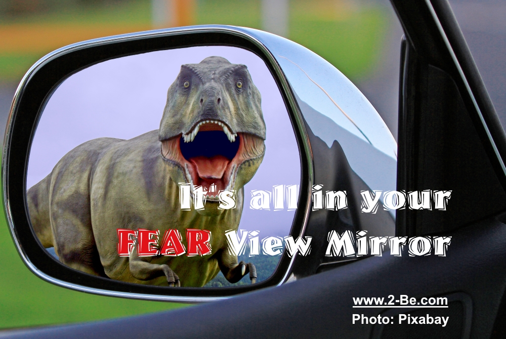 fear view mirror